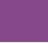 13 - N°160 Violet Mangue