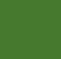 24 - N°167 Vert Olive