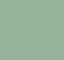 31 - N°172 Terre Verte