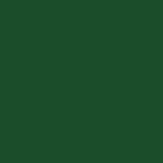 25 - N°267 Vert Pin