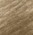 98 - N°176 Van Dyck